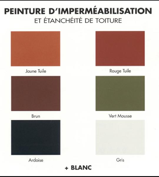 Travaux de peinture de votre toiture for Choisir couleur toiture